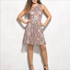 Lovely Adrianna Papell Lace Dress